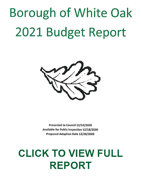 2021 Budget Report
